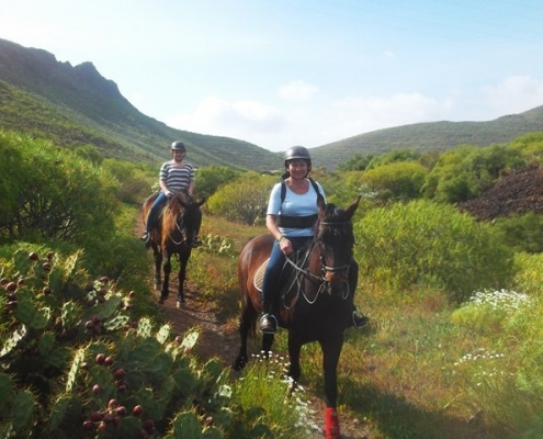 Tenerife Leisure Horse Riding