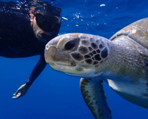 Tenerife Leisure Snorkeling